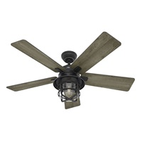 Hunter Fan 54in Weathered Zinc Outdoor Ceiling Fan with a Clear Glass LED Light Kit and Remote Control, 5 Blade